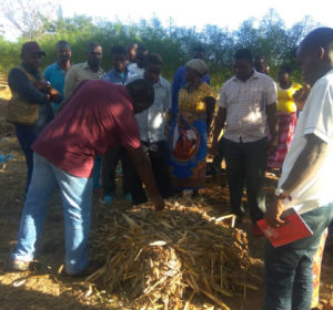 Crop residues processing training. Photo: Claire Mwamadi